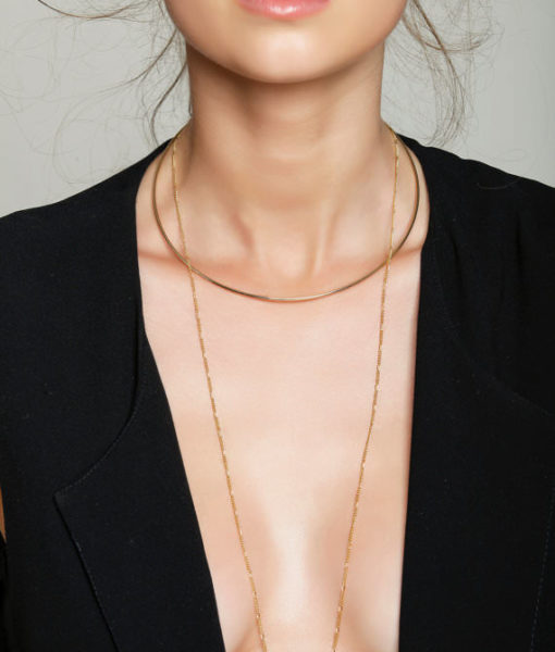 2-in-1 Choker and Chain Necklace