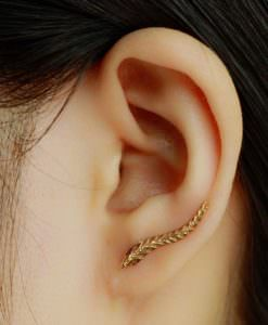 Golden Leaf Feather Stud Earrings For Women